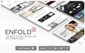 Envold-premium-wordpress-theme-download